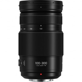 Panasonic 100-300mm E 1:4,0-5,6 OIS II