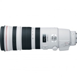 Canon EF 200-400mm 1:4,0 L IS USM + Extender 1,4x
