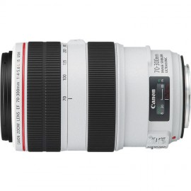 Canon EF 70-300mm 1:4,0-5,6 L IS USM