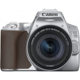 CANON EOS 250D Silber + EFS 18-55 IS STM