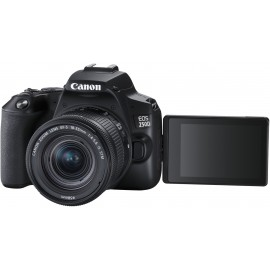 CANON EOS 250D + EFS 18-55 IS STM